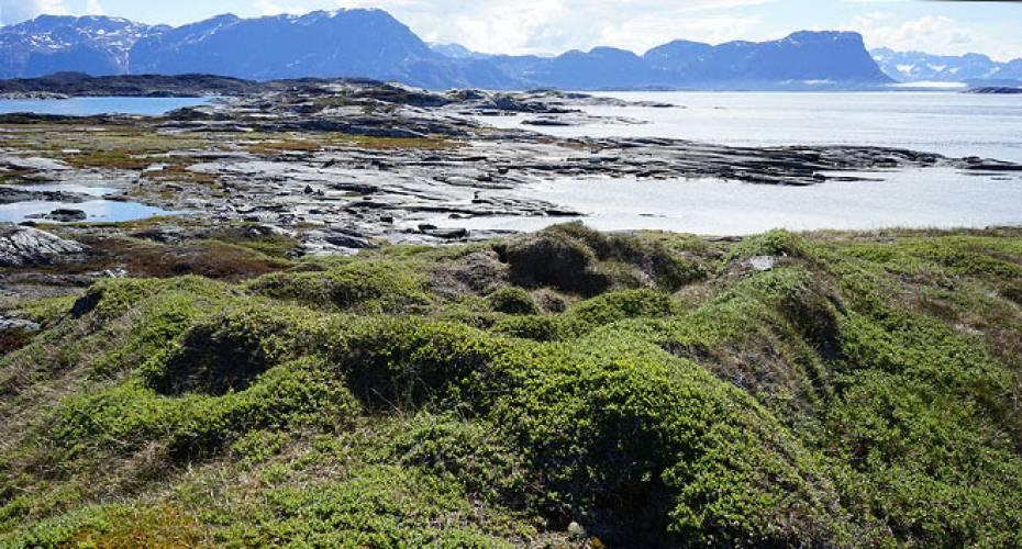 Grønlandsk jagtområde søges optaget på prestigefyldt UNESCO-liste | Sermitsiaq.AG