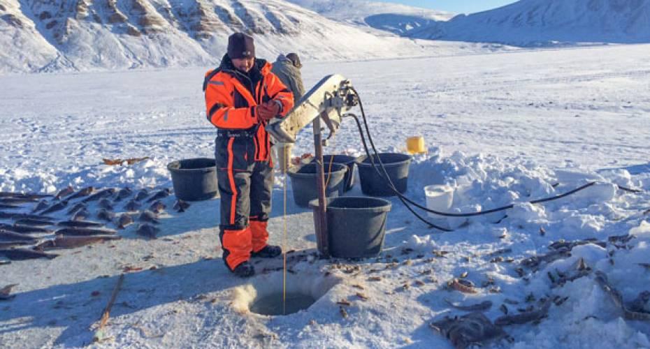 Hydraulisk ophaler, Qaanaaq, isfiskeri, hellefisk