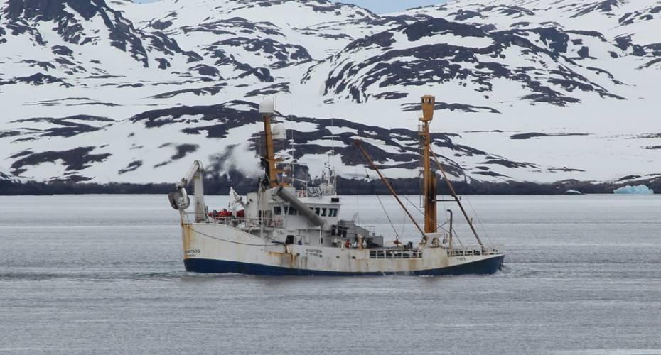 Brøndbåd, Maniitsoq, Royal Greenland