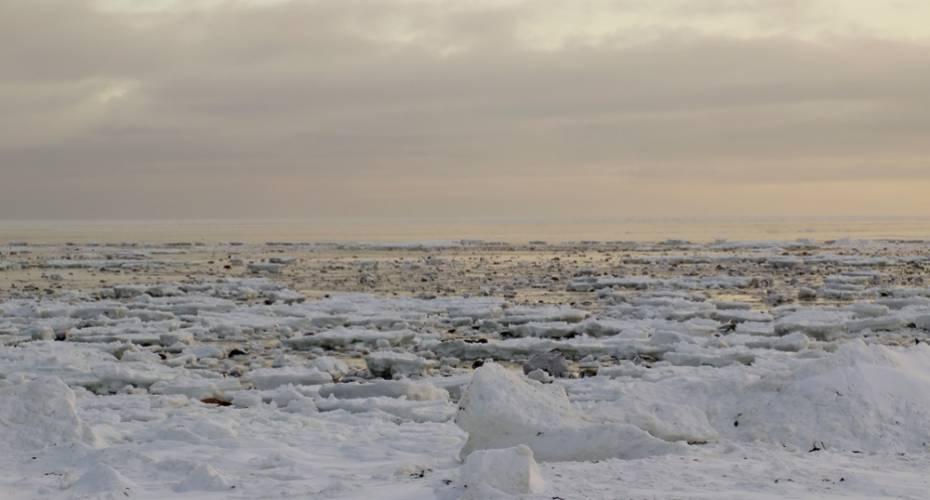 Havstrømme, Polfoto, is
