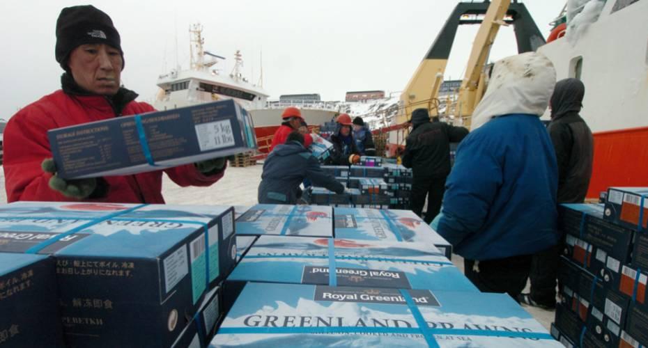 Rejer, rejekasser, Royal Greenland