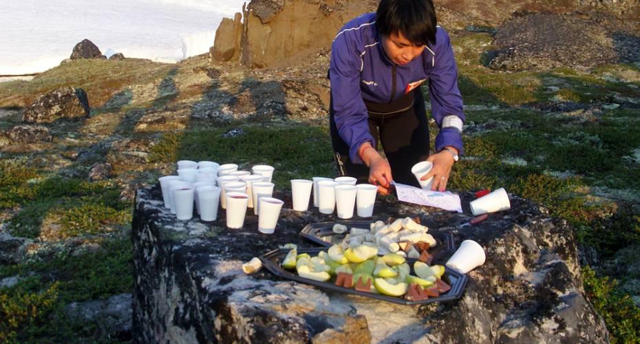 AMO, Arctic Midnight Orienteering, Ilulissat, Tanja Johansen