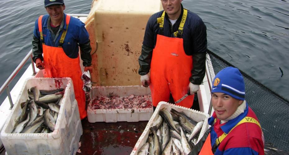 Torskefiskere, Kim Kielsen, indhandling, torksefiskeri, torsk