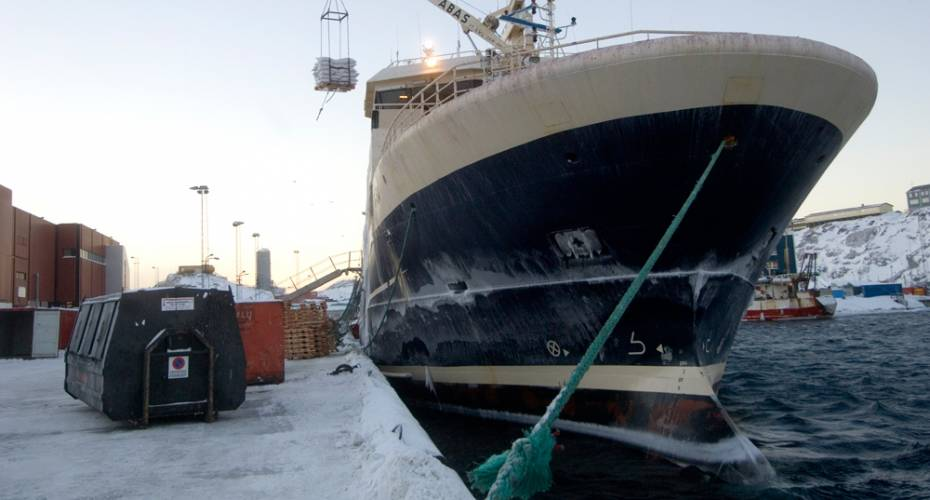 Trawler, Nattoralik, rejer, rejetrawler